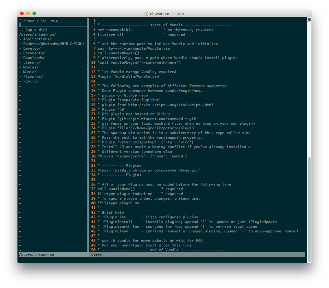 vim with NERDTree